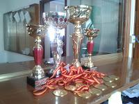 Trofeos para liga 2012-2013