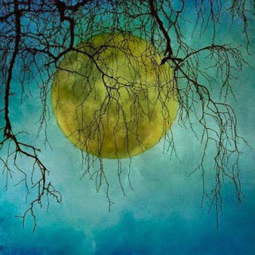 Medicine Making By The Moon By Gretchen Lawlor