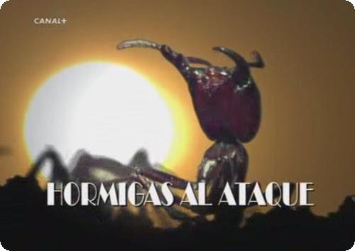 Hormigas al ataque [BBC][DVBRip][Espa�ol][2006]