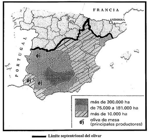 Mapa de la distribución provincial del olivar. Selectividad Septeimbre 10/11