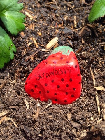 paint rocks and use them as garden markers www.thebrighterwriter.blogspot.com