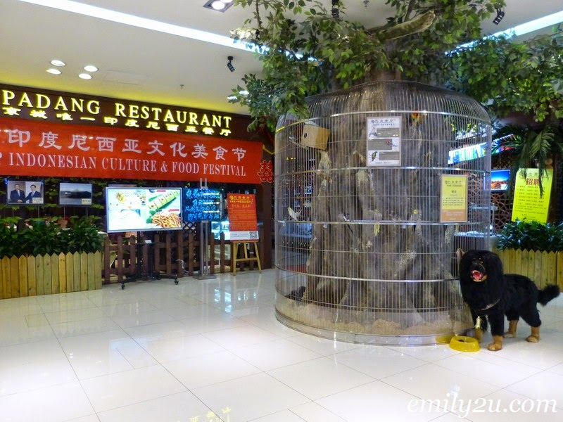 Padang Restaurant Beijing China