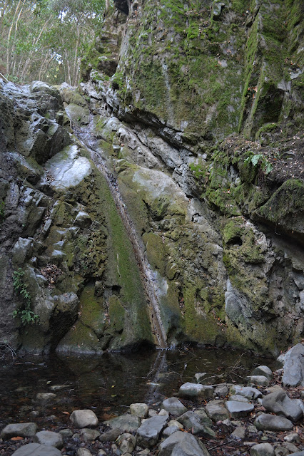 waterfall in Tequepis Canyon