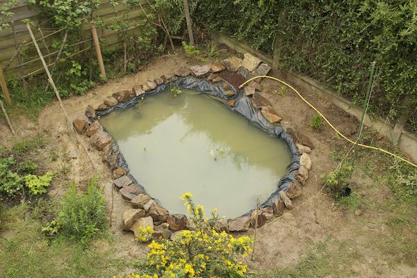 Nature bassin la mare et le bassin de jardin naturel for Bache pour bassin de retention