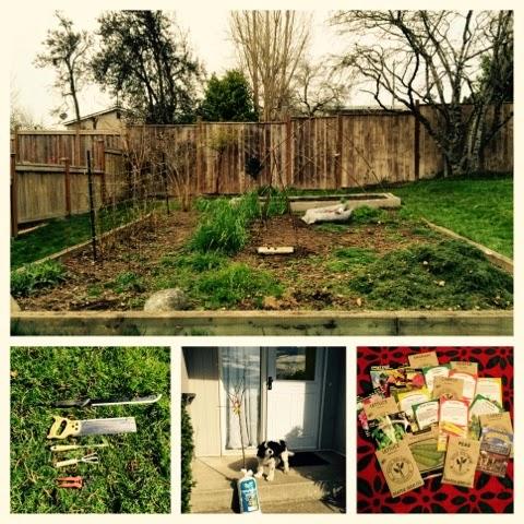Pacific Northwest Gardening, Organic, Springtime prep - cultivatedrambler.com