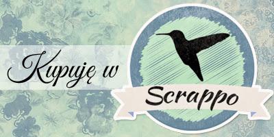 www.scrappo.pl