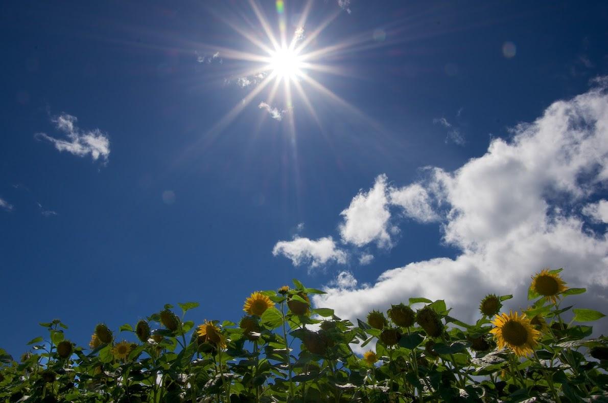 真っ青な空・白い雲・輝く太陽