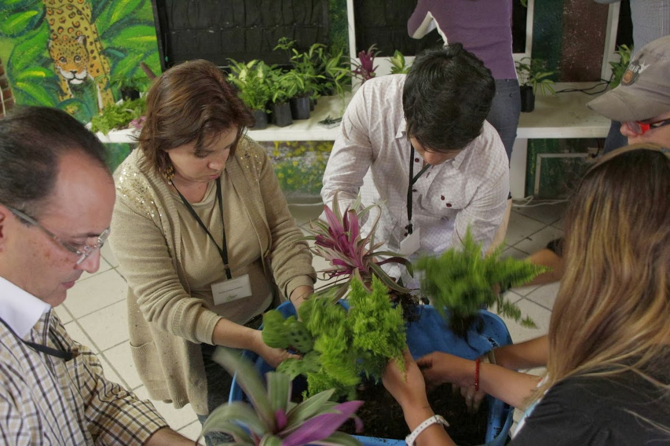 Cursos de jardines verticales de Puebla México