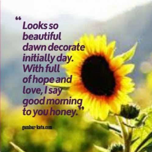 Kata Bijak Cinta Lucu Dan Gokil