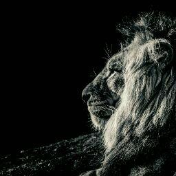 Ana Maria Guzman picture