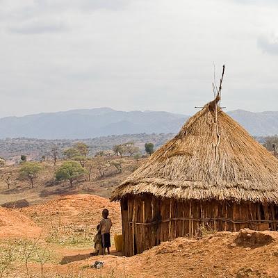 Dry Landscape, Hopeful Future