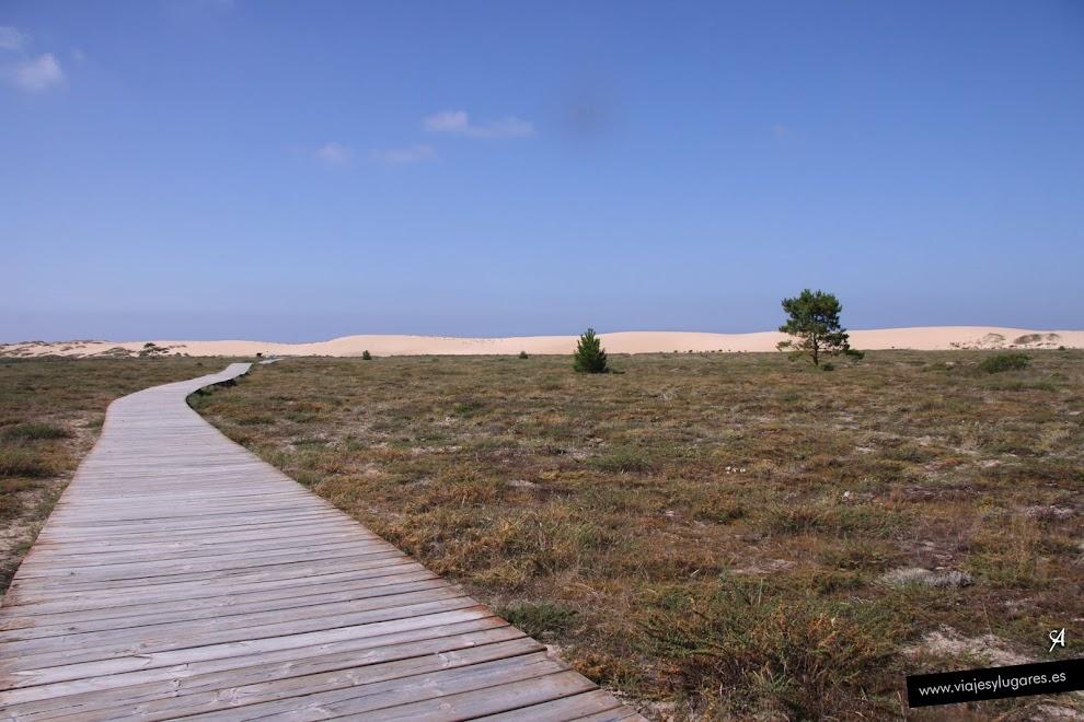 La duna móvil en el Parque Natural de Corrubedo