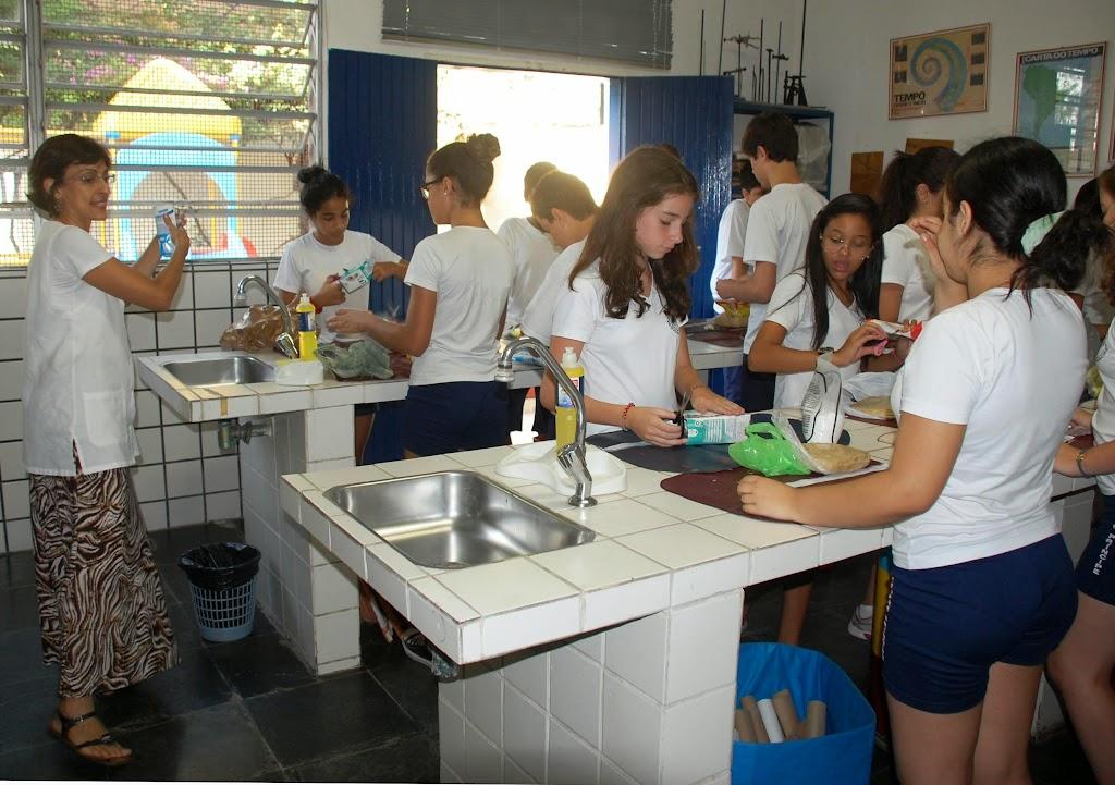Atividade Prática de Ciências – 8º ano – Unidade I – 2014