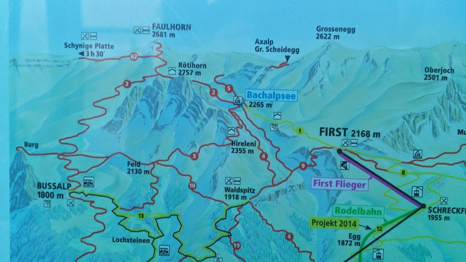 Hiking map from the First Gondola to the Bachalpsee to the Faulhorn, down to the Bussalp, then back to Grindelwald.