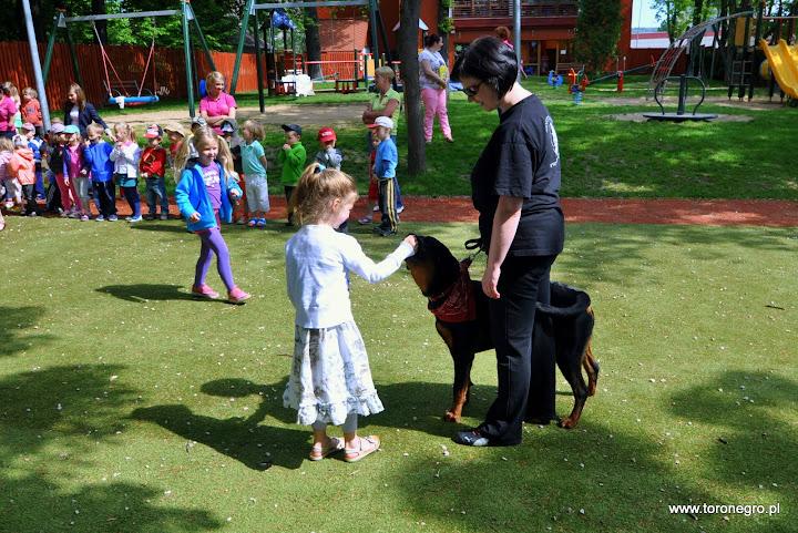 Dziecko karmi dużego psa