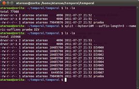 Como dividir un archivo en Ubuntu