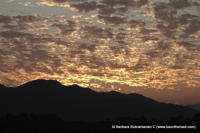 Vivid and Vibrant Evening Sky at Kaziranga - 7