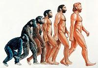 εξέλιξη ανθρώπου,εξέλιξη πιθήκου,ενδιάμεσα στάδια εξέλιξης,human evolution,ape evolution,middle stages of evolution