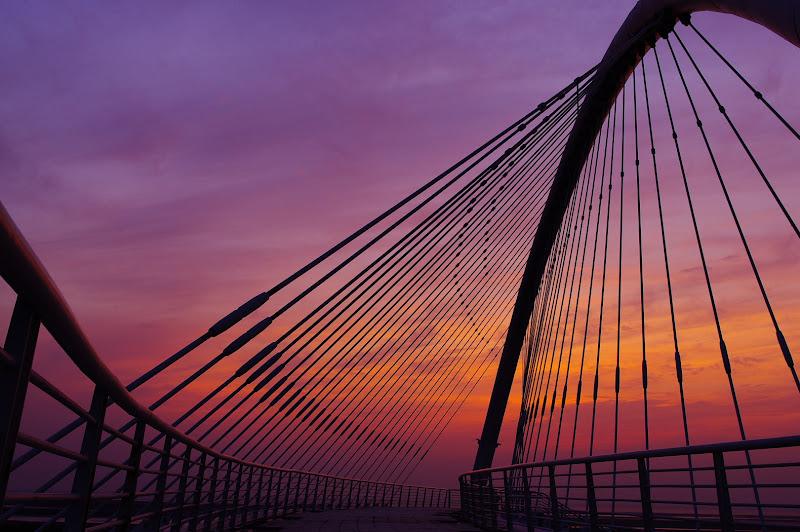 豎琴橋一張流