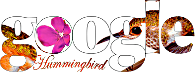 google hummingbird custom immage