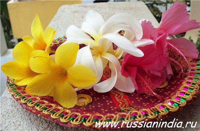 Цветы для пуджи дома