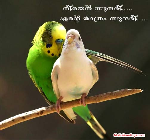 Love Messages In Malayalam With Pictures: Malayalam Orkut Scrap Love Page 2