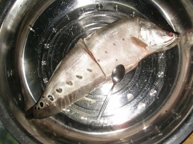 เมี่ยงลาบปลากราย