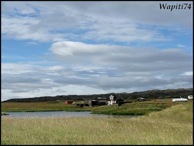 Un tour  d'Islande, au pays du feu... et des eaux. 10-Arnastapi