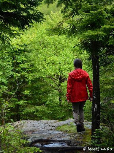 Tura la munte in Canada. Mont Orford.  poza mea preferata pentru ca asta-mi place cel mai mult sa fac (by Andrei)
