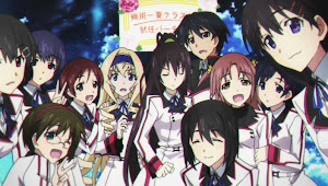Infinite Stratos, IS Harem