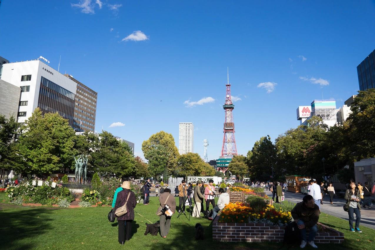 大通り公園から観るテレビ塔