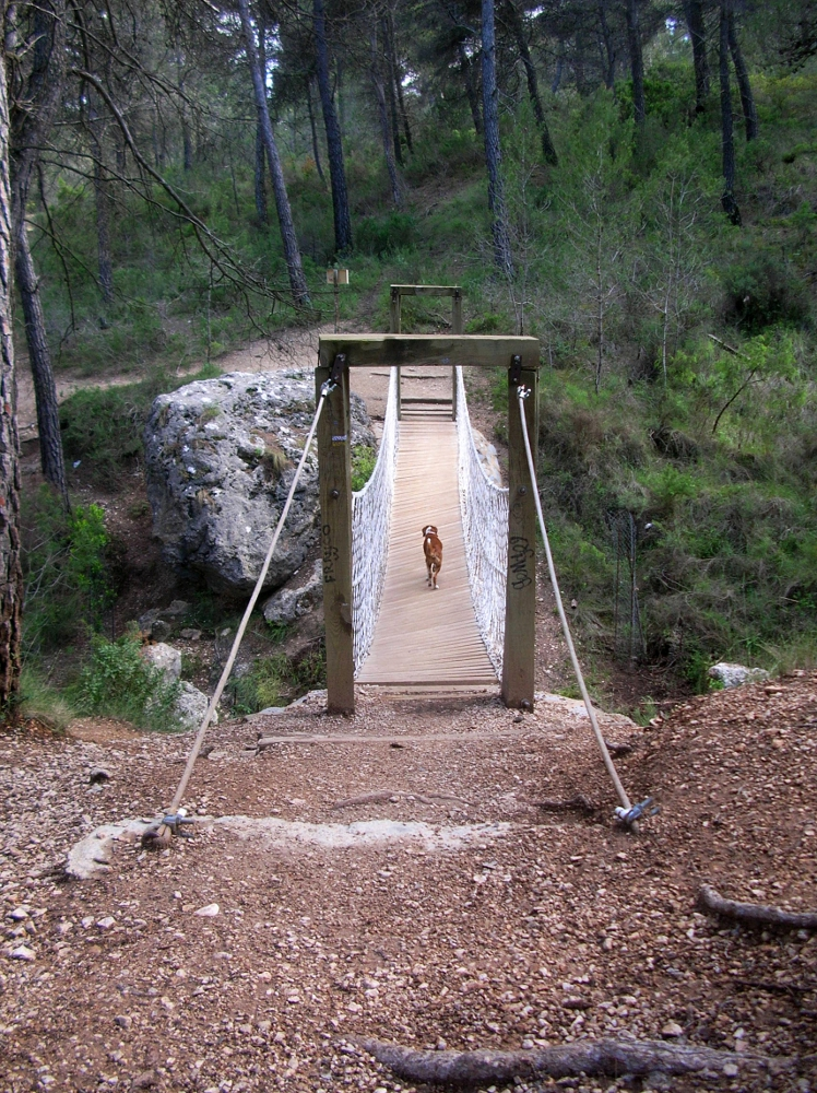 Kako en el puente colgante