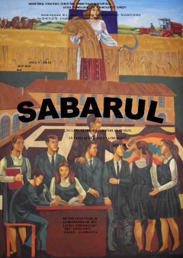 ed4_liceu_sabarul_LICEUL TEHNOLOGIC_DR C ANGELESCU_gaesti_DAMBOVITA