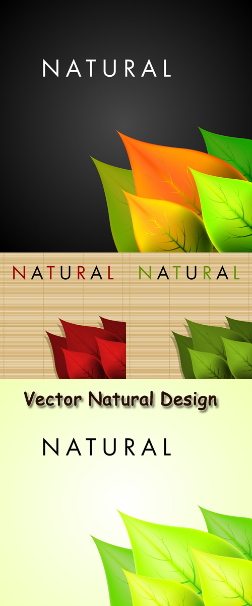 Stock: Vector Natural Design