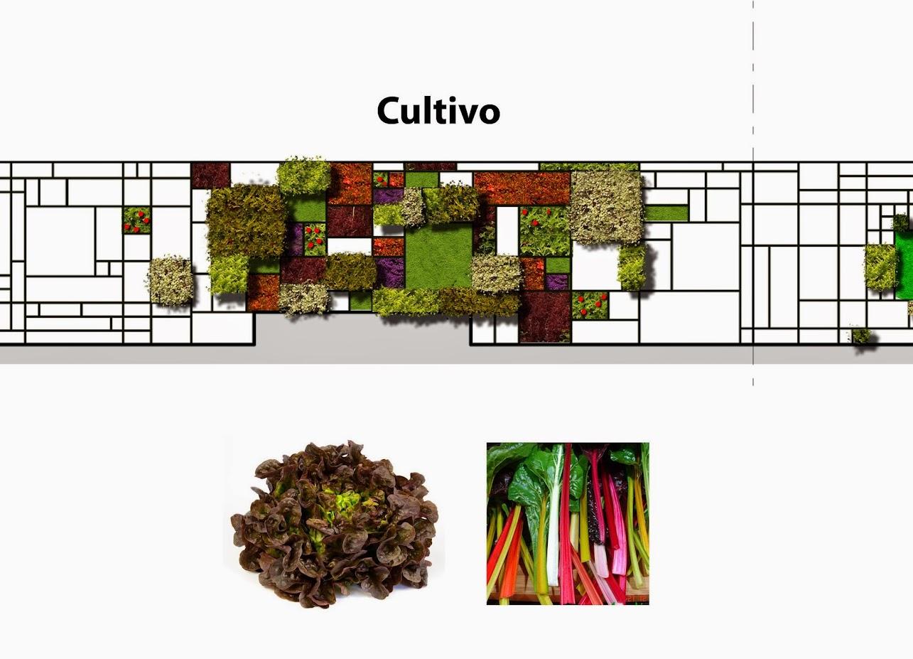 Diseño de jardín vertical en México