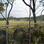 The large fenced in clearing (33638)