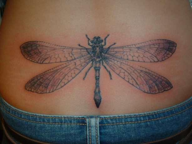 tatuaże owady