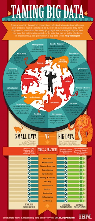 12 Data Best Practices Taming Big Data IBM