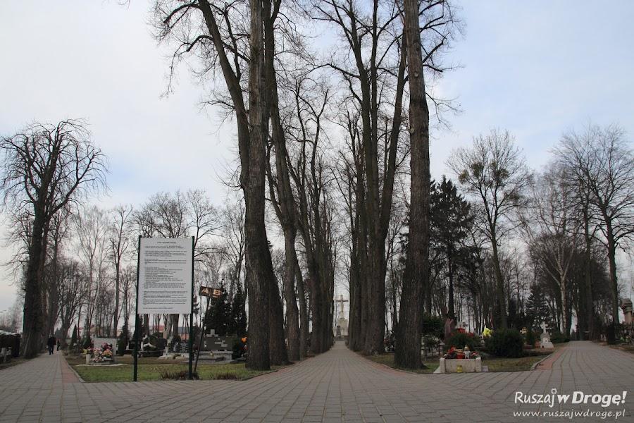 Stary Cmentarz w Pelplinie