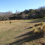 Main camping area at Rocky Plain camp ground