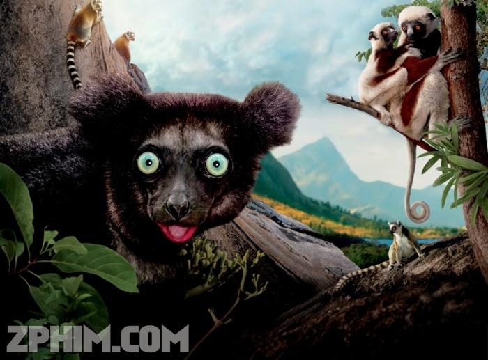 Ảnh trong phim Hòn Đảo Của Vượn Cáo Ở Madagascar - Island of Lemurs: Madagascar 1