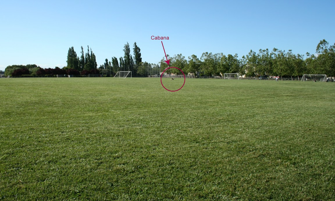 pulled back image of fields to show how large they are, cabana standing in the center, she's a little blip so I put a red circle and arrow around her