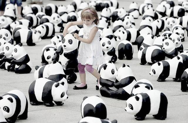 為瀕危動物發聲 1600隻紙雕貓熊台北亮相