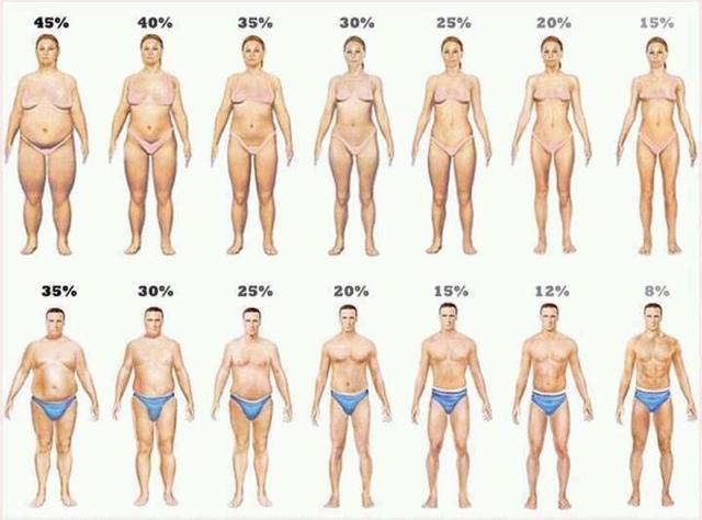 normal fettprosent i kroppen menn