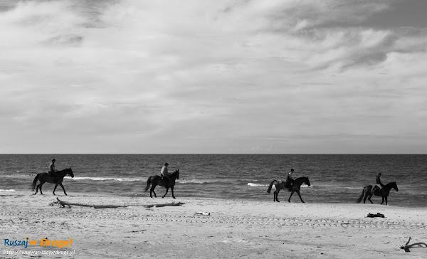 Plaża koło Czołpina - konna karawana