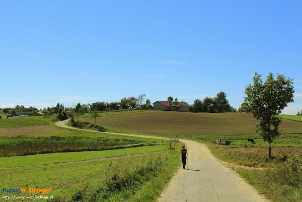 Trasa Nordic Walking w Pomieczynie