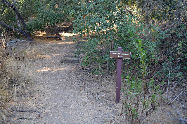 another trail starting