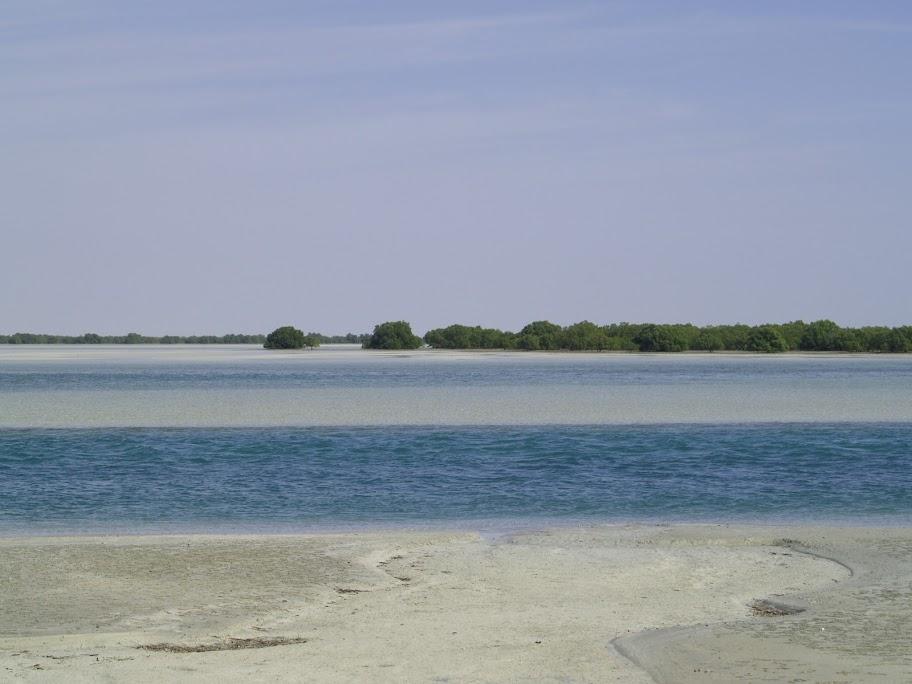 Al Dibbeiya canal