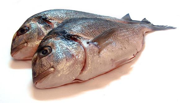 Cara Memilih Dan Memasak Ikan Untuk Ibu Hamil