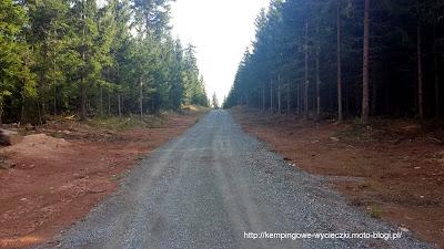 Jagodna wejście szlakiem niebieskim 08.2014